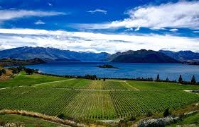 New Jobs in New Zealand – Apply Now
